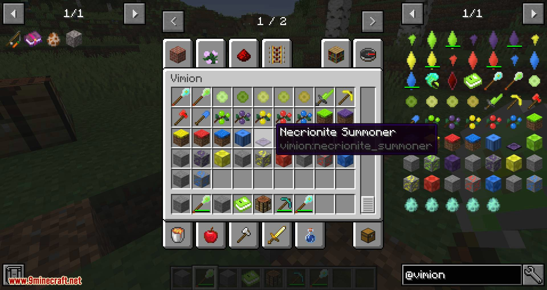 Vimion Mod for minecraft 14